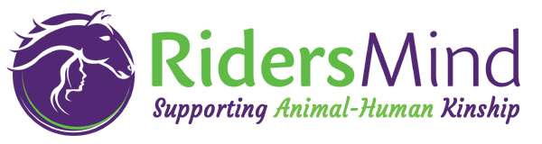 RidersMind.com – Animal Communication | Energy Healing